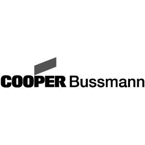 NALP Partner Cooper Busmann